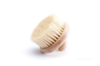 Obrázok pre výrobcu Masážna kefa s vláknami tampico - bez rúčky