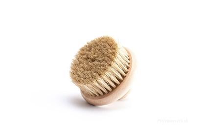 Obrázok pre výrobcu Masážna kefa s prírodnými štetinami - bez rúčky