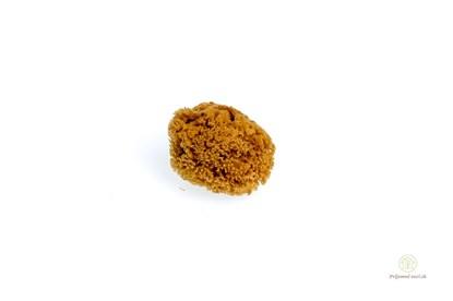 Obrázok pre výrobcu Morská huba tráva malá - nebielená